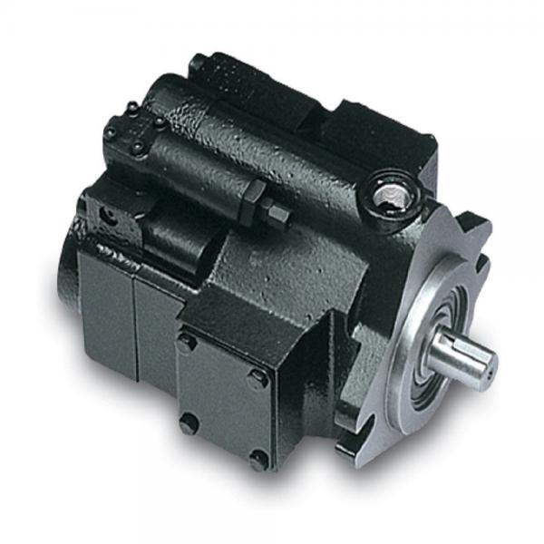 PAKER F12-110-MS-SV-S-000 Piston Pump #1 image