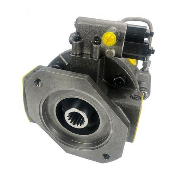 Rexroth R901075200 PVV41-1X/122-046RA15UUMC Vane pump #1 image
